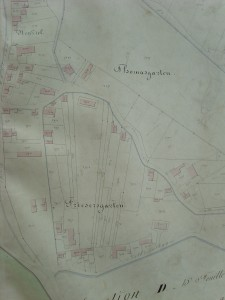 Plan section D dite Robertsau,16° feuille, partie Neuziel