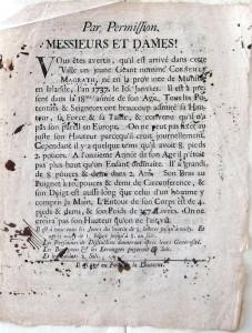 Affiche Géant (IX 89, français)