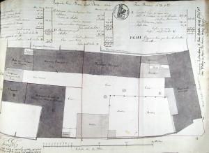 Thomann 24-25 (1834, 7 E 57, 15 (56)